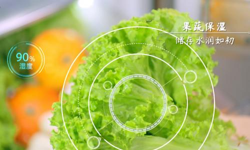 冰箱里的青菜最多放几天?海尔冰箱:保鲜15天不蔫!